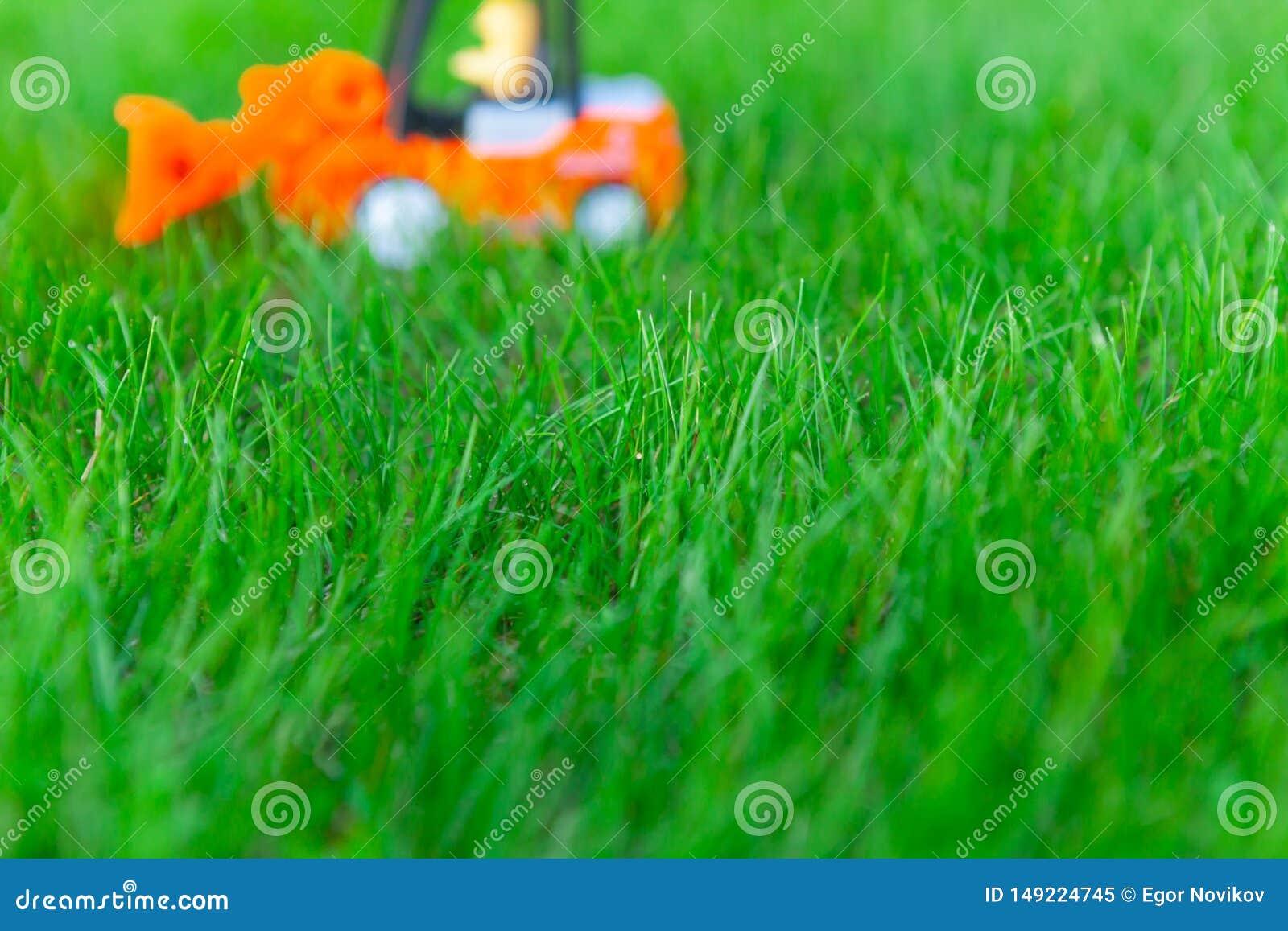 Запачканный затяжелитель игрушки, тележка на свежей зеленой траве, игрушке для детей