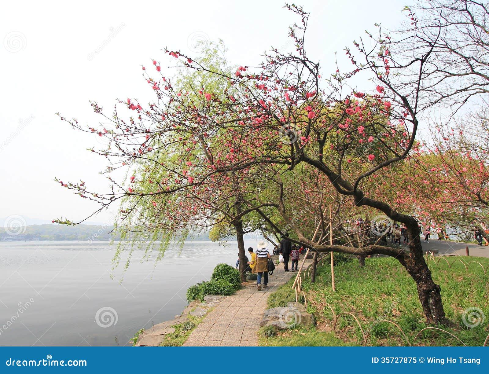 Западное озеро в Ханчжоу, фарфоре