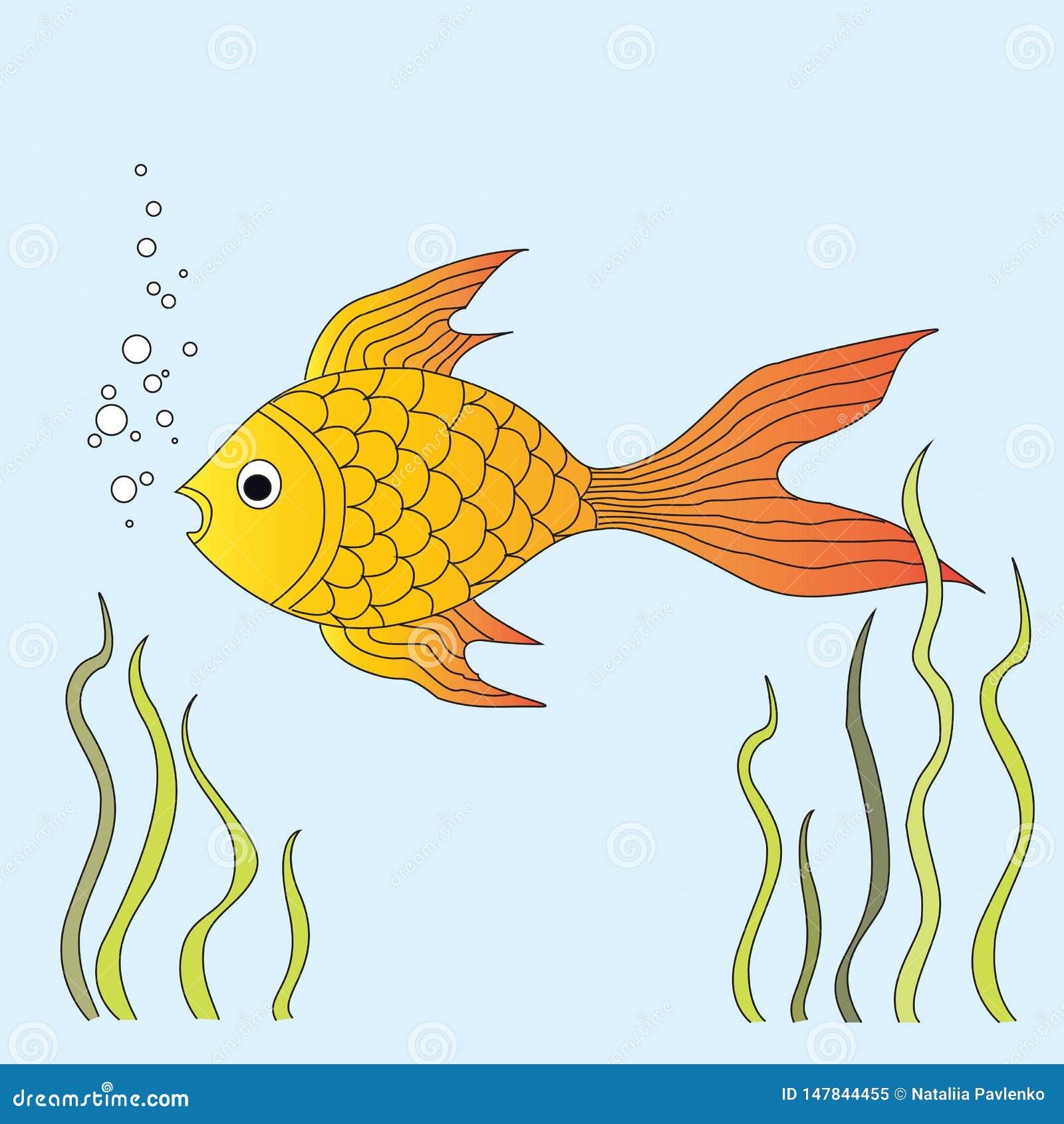 Заплывы рыбки в воде в аквариуме Водоросли вокруг его r