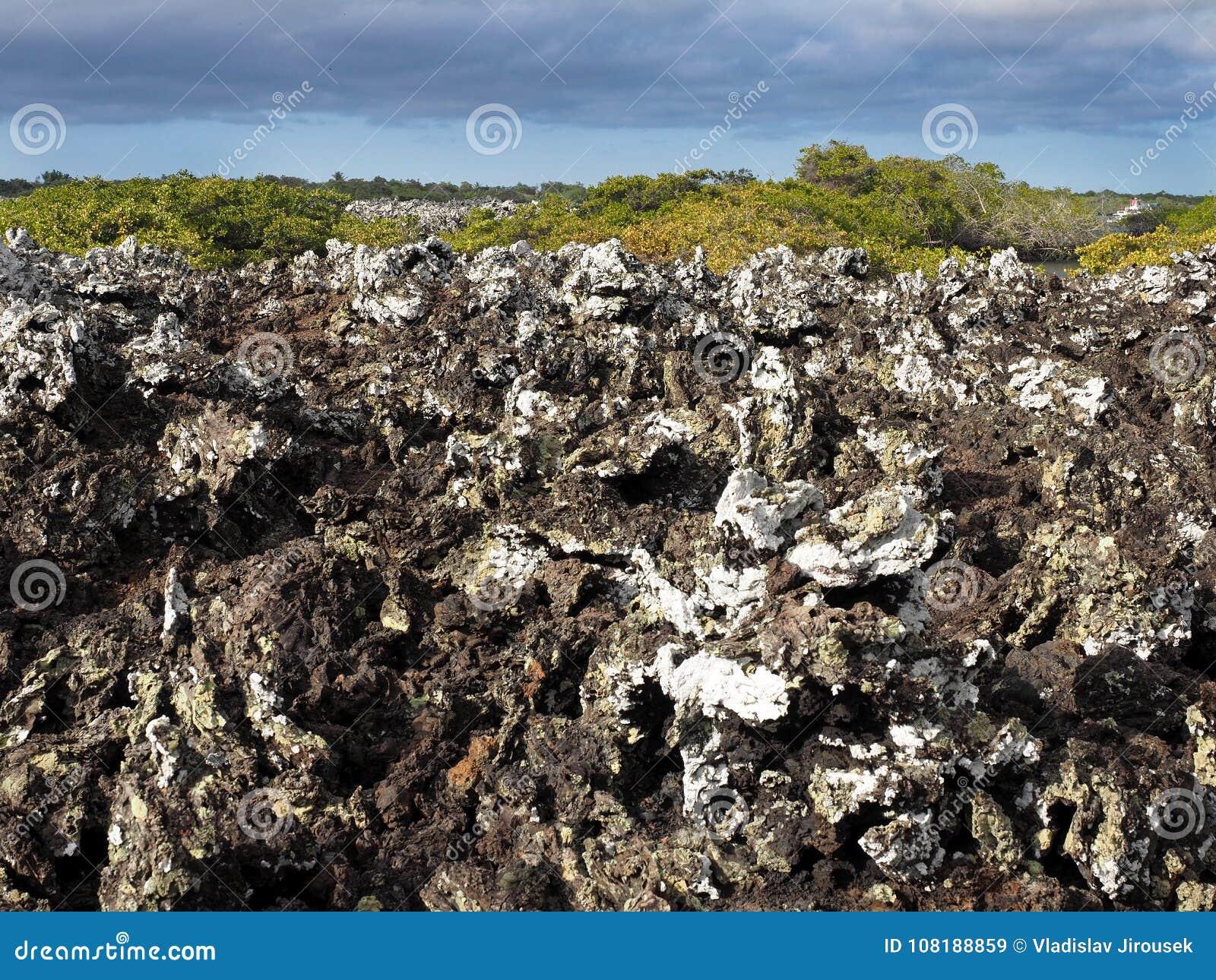 Заполненная лава на острове Islote Tintoreras чествует moonland, Галапагос, эквадор