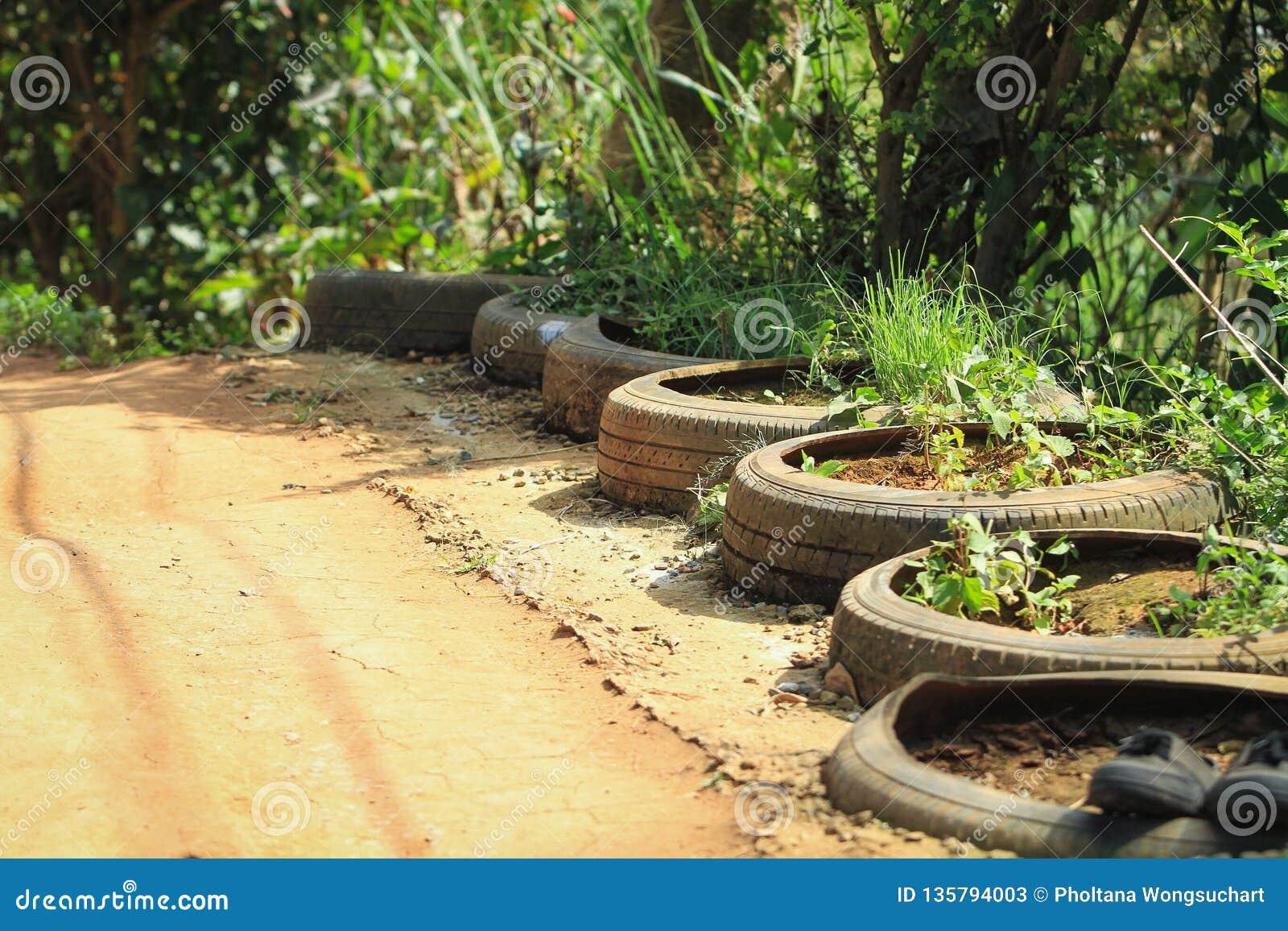 Засаживать деревья в колесах автомобиля вдоль тропы