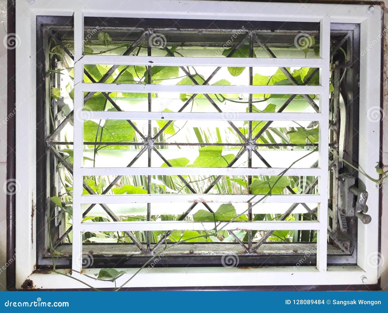 Засорители в дом Через зазор стеклянного окна