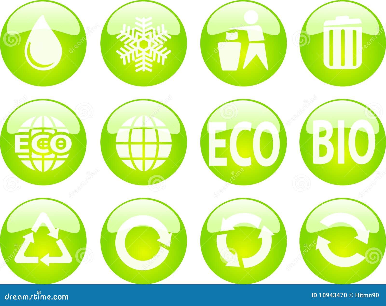застегивает eco