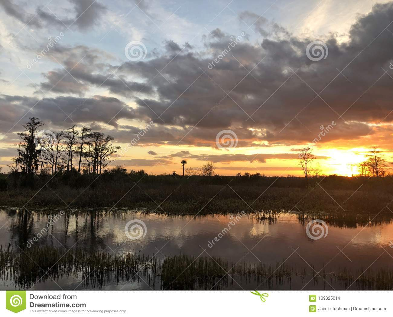 заход солнца в болотах