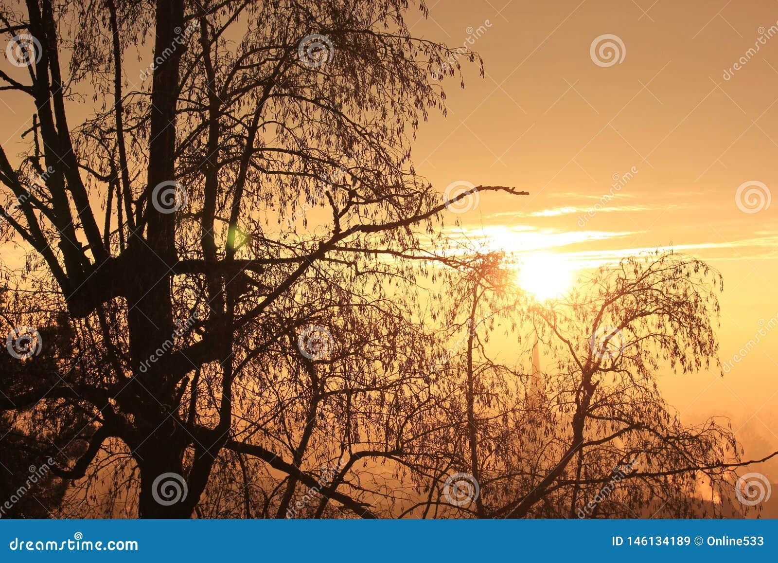 Заход солнца на прекрасном вечере зимы