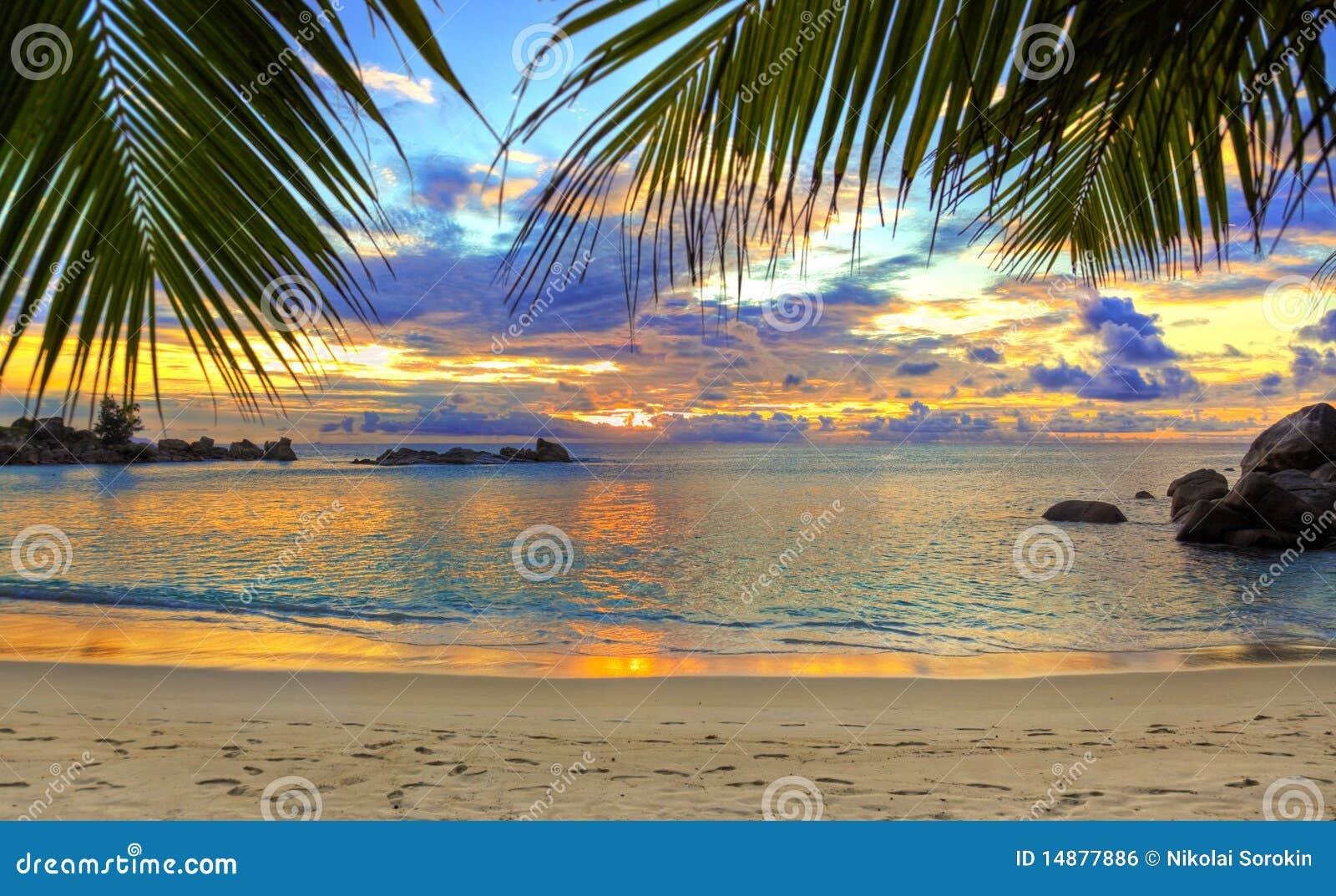 заход солнца пляжа тропический