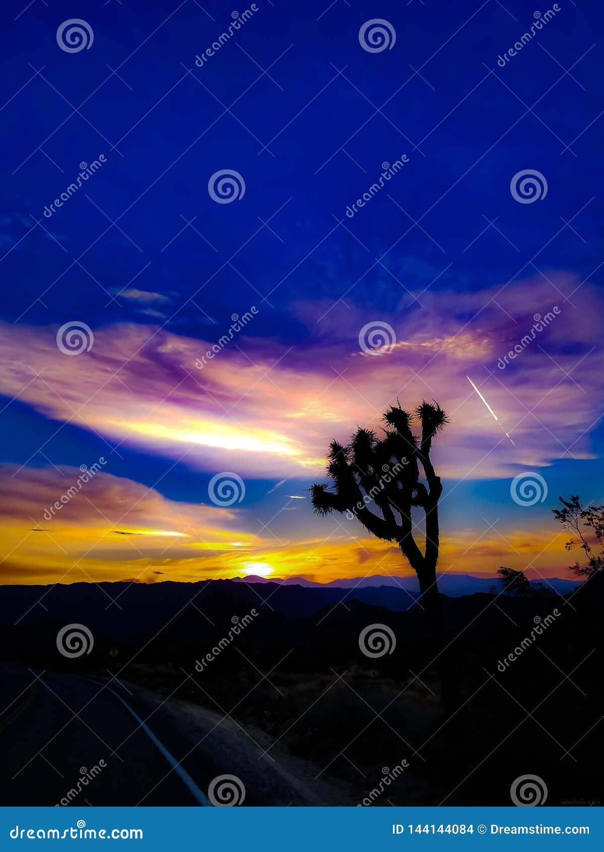 Заход солнца пустыни на JTNP