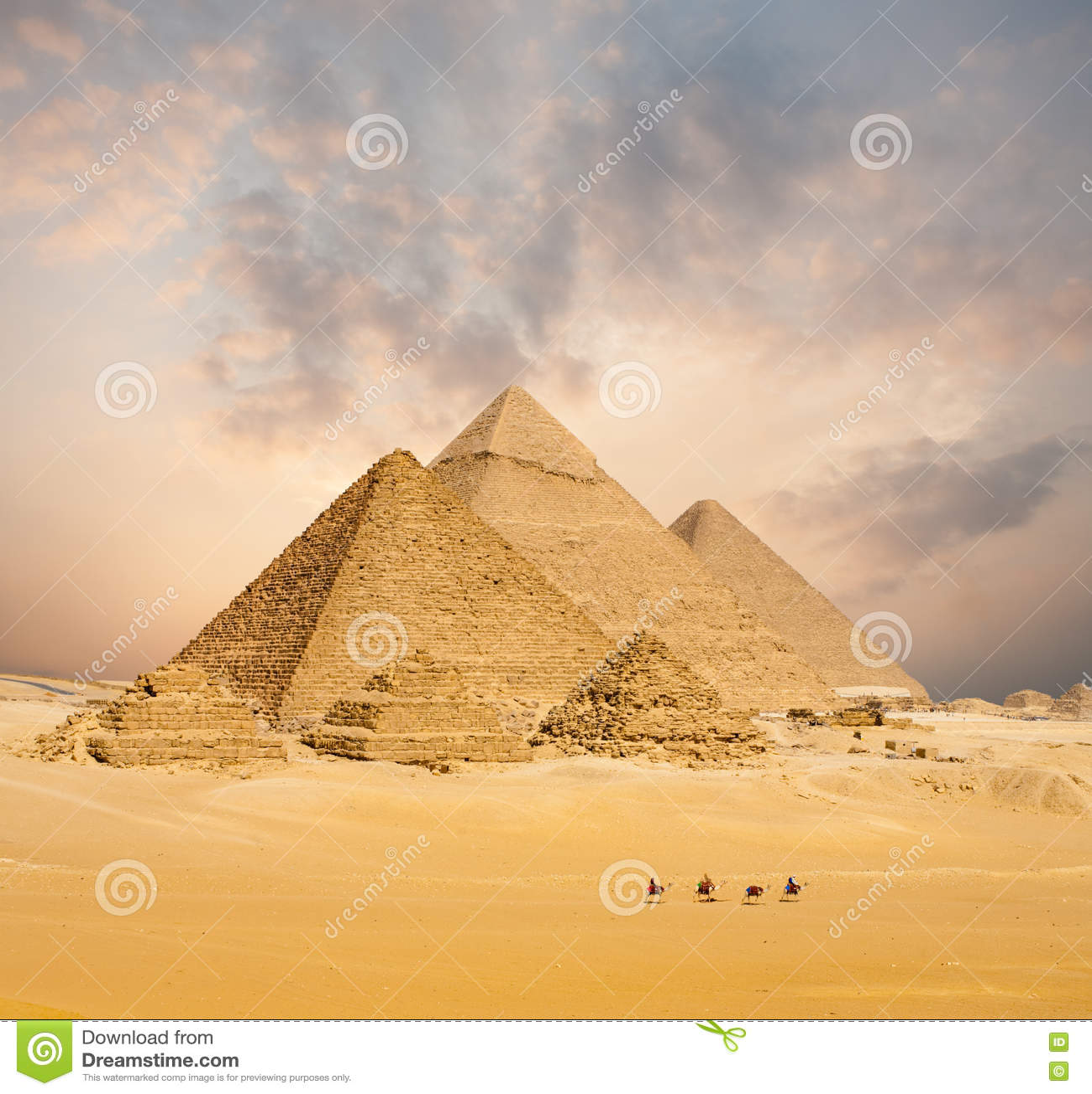 Заход солнца вся широкая египетских верблюдов пирамид дистантная