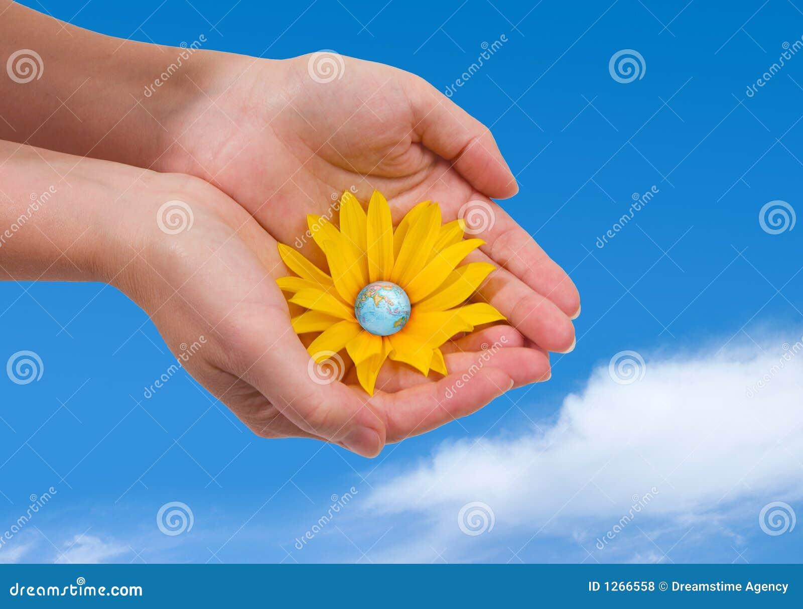 зацветая мир