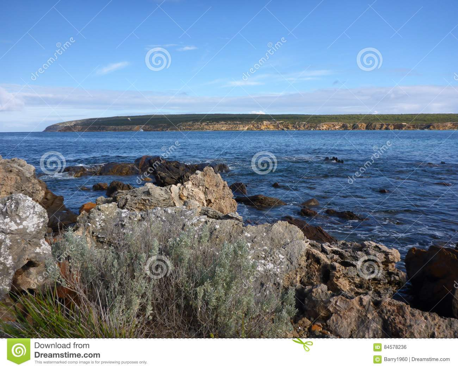Залив рыбозавода