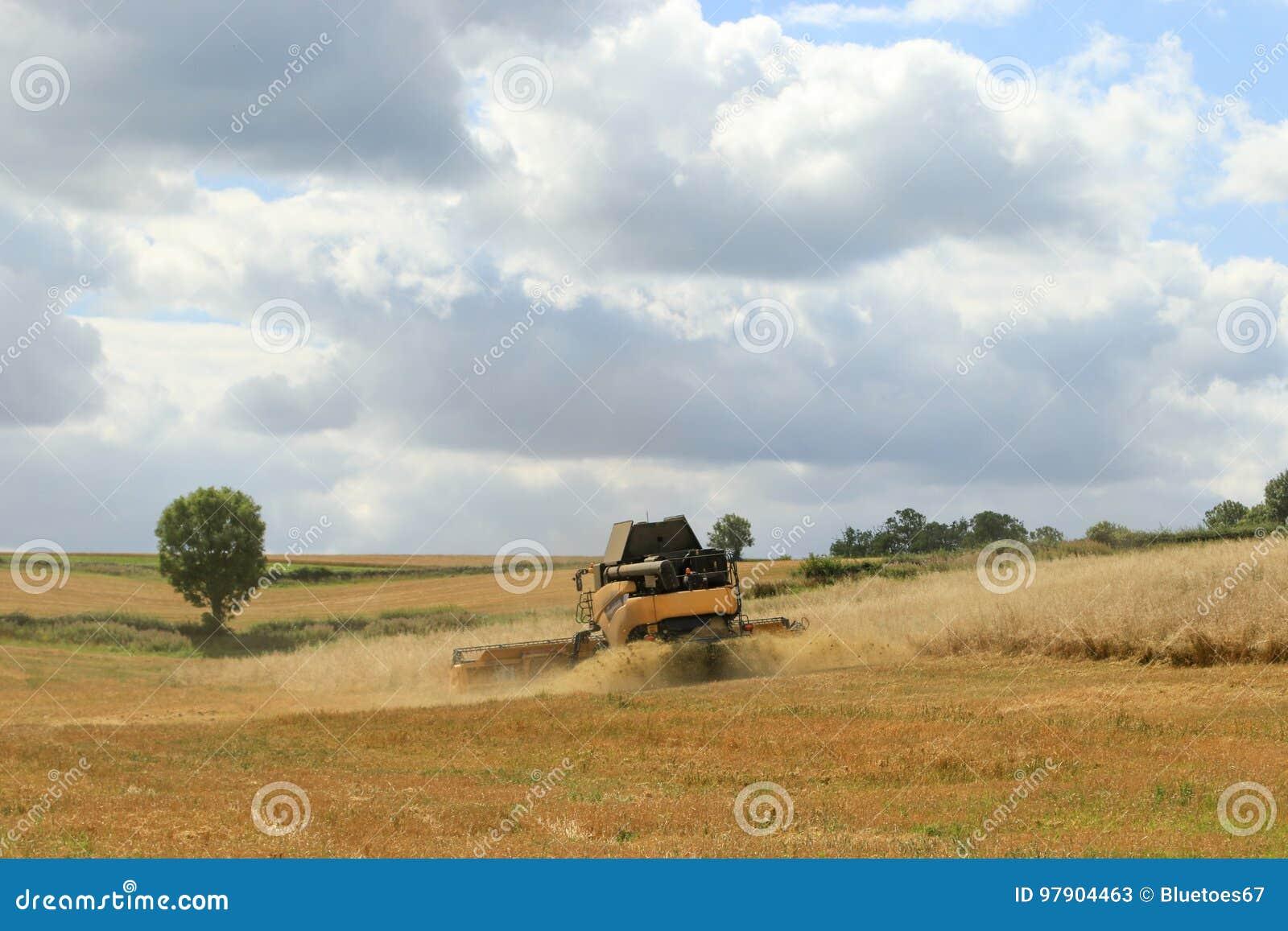 Задний взгляд современного нового вырезывания жатки зернокомбайна Голландии подрезывает