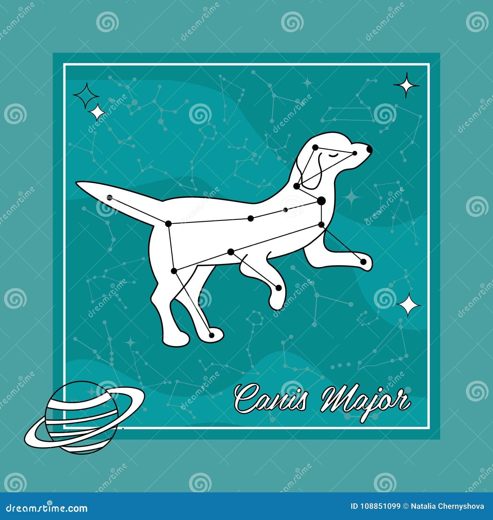 фото созвездие собаки