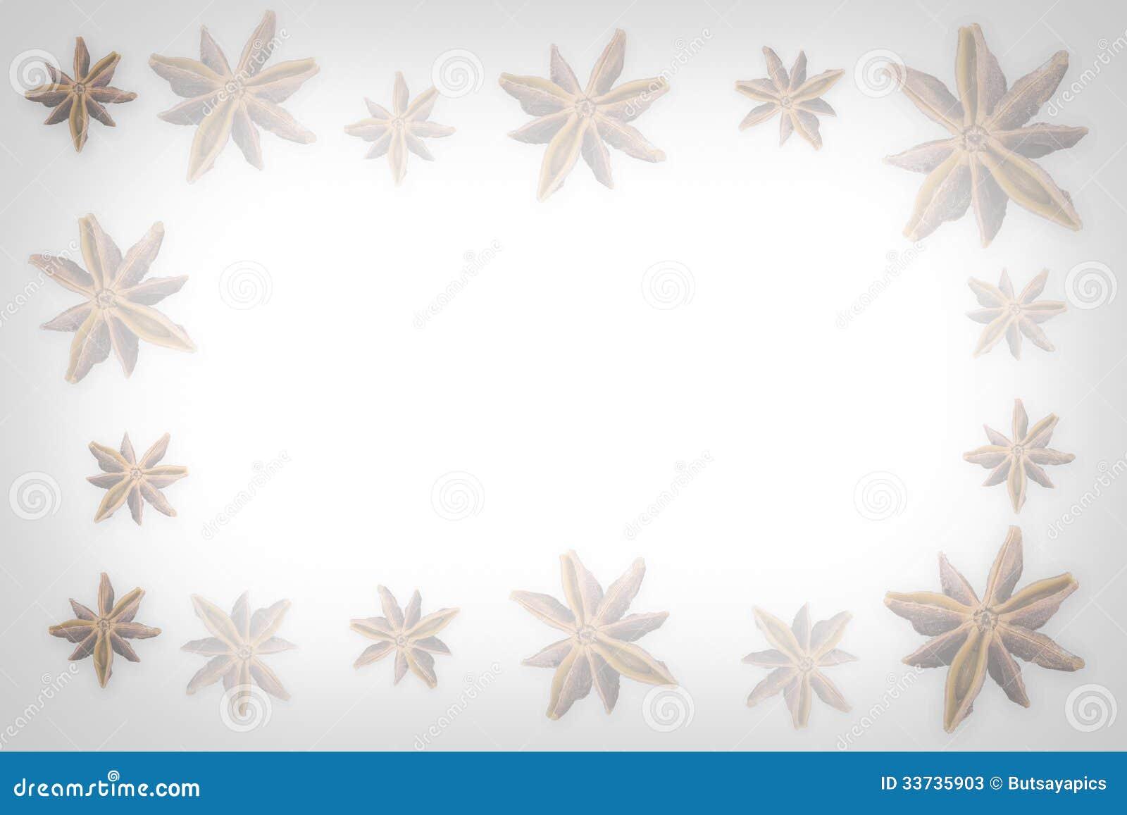 Звезда анисовки