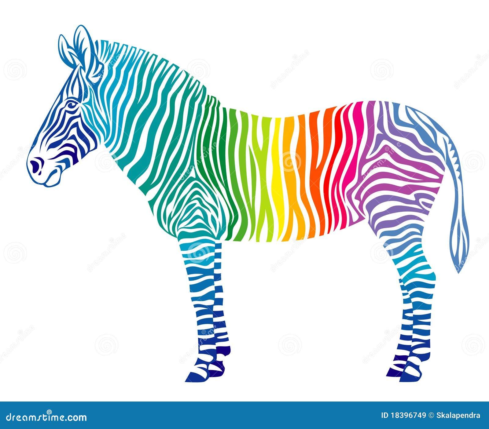 зебра радуги