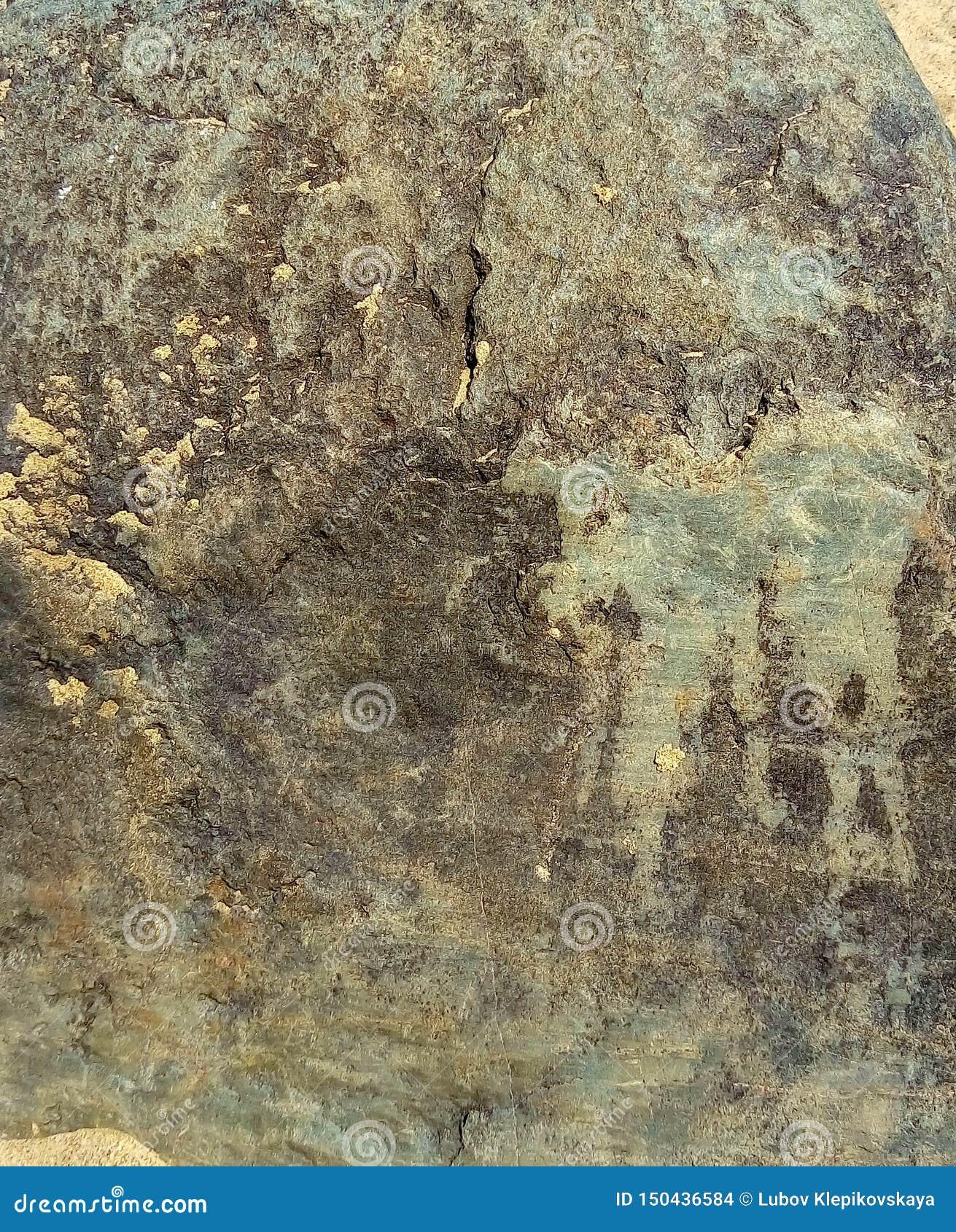 Зеленая каменная текстура на пляже