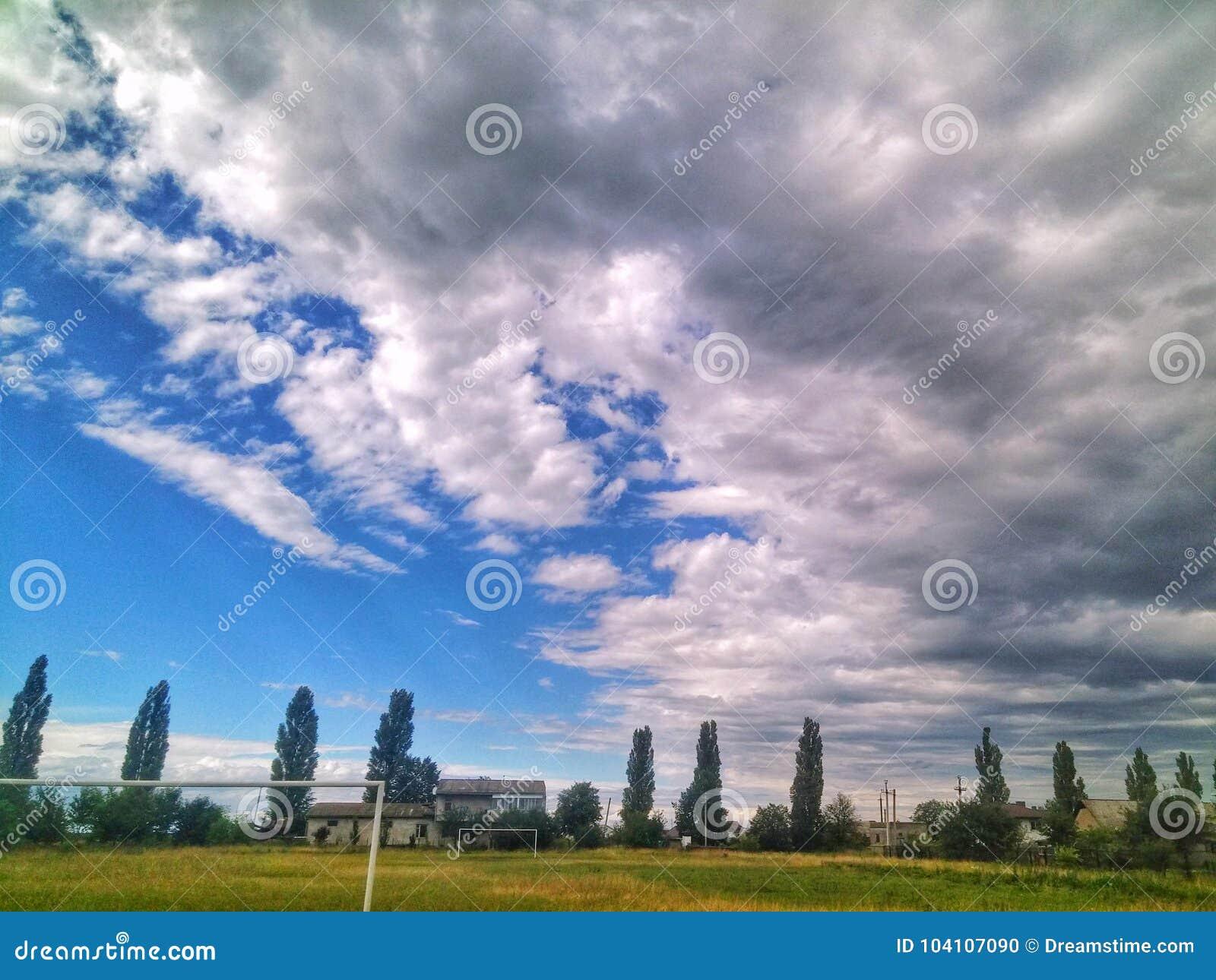 зеленое небо дерева заволакивает лето природы футбола внешнее