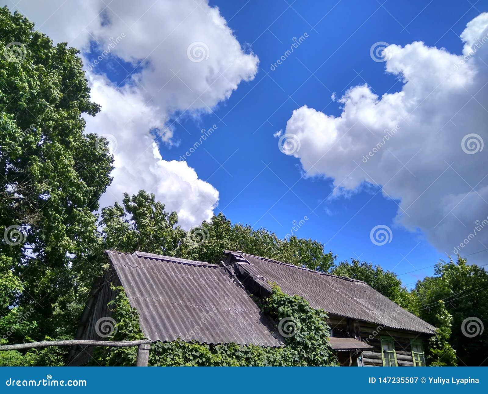 Зеленые деревья и дом против красивого голубого неба с белыми облаками в русской деревне