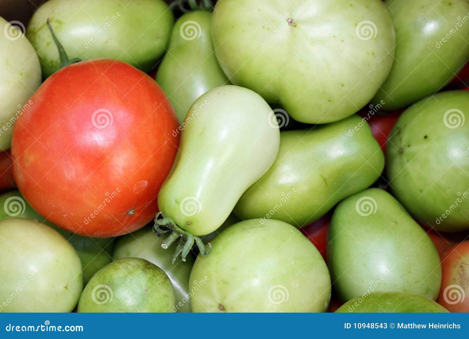 зеленые красные томаты