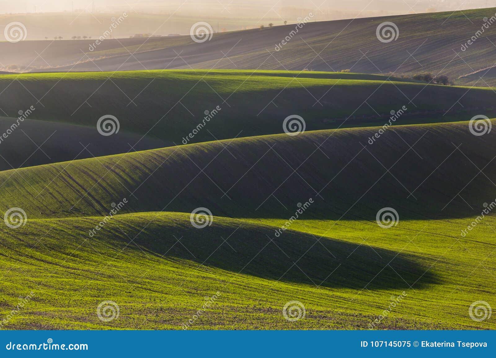 Зеленые холмы Моравии