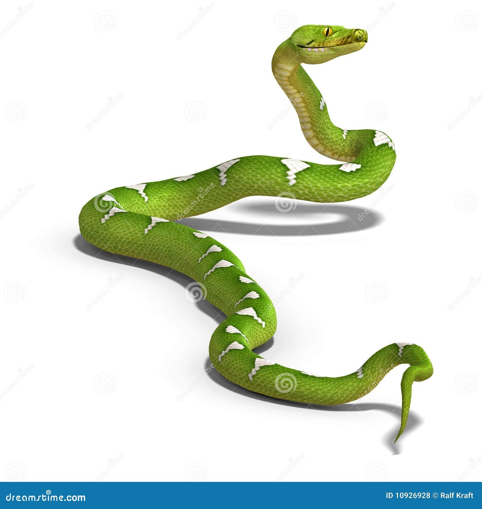 зеленый вал питона