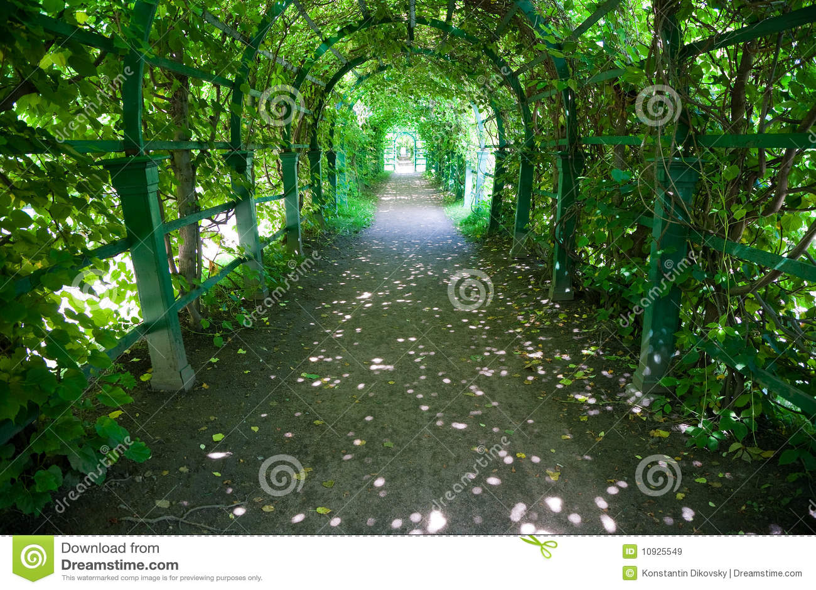 зеленый длинний тоннель