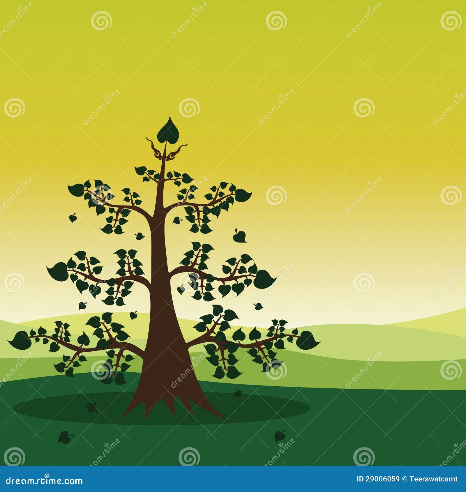 Зеленый ландшафт пущи
