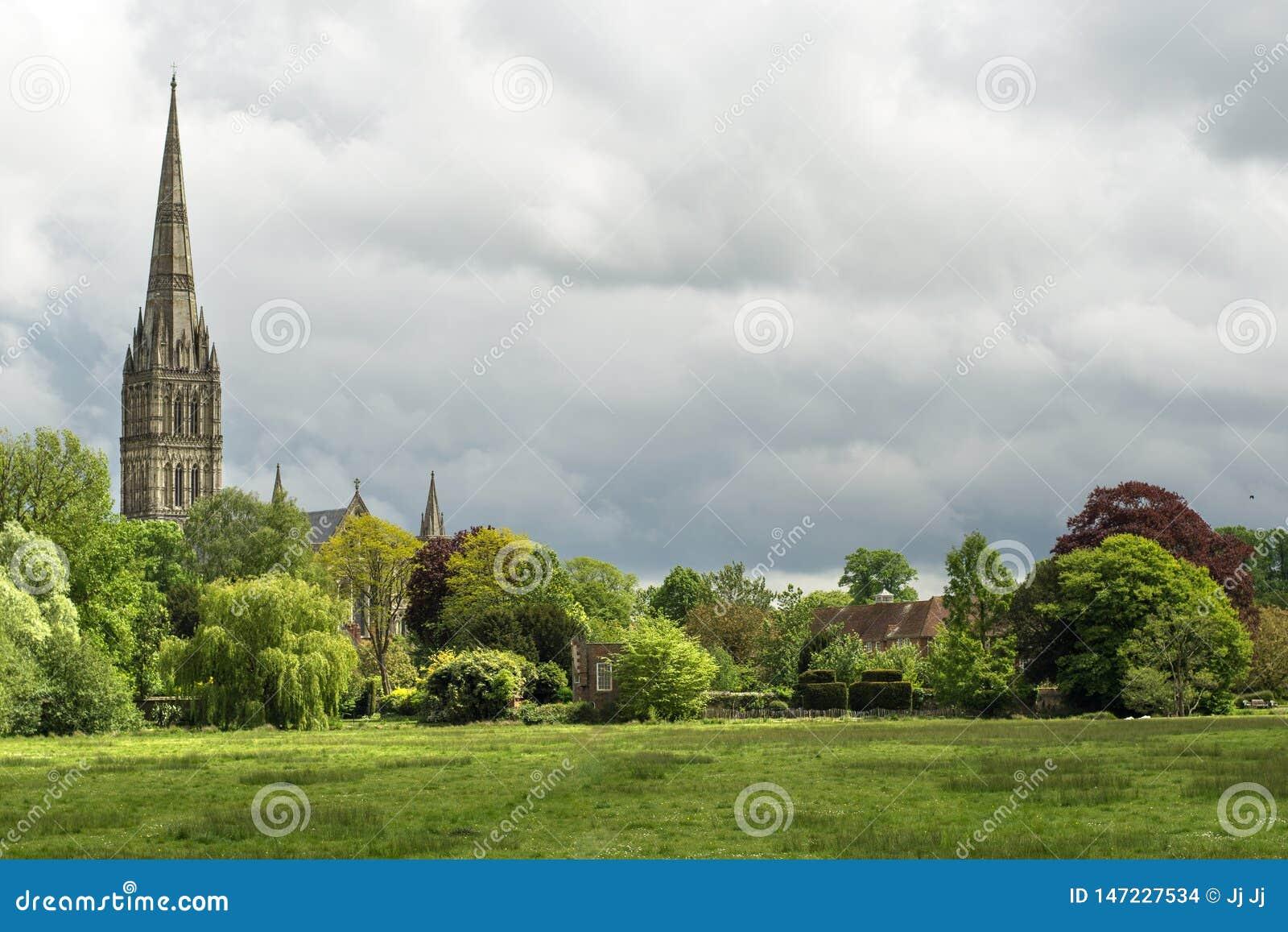 Зеленый ландшафт с собором Солсбери на заднем плане