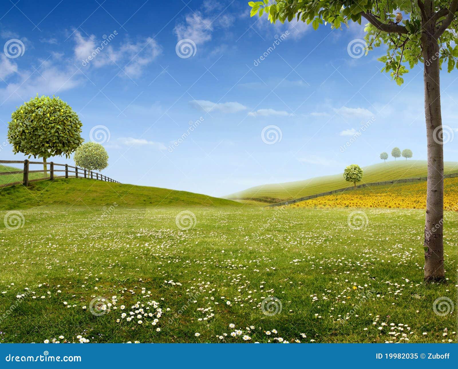 зеленый ландшафт