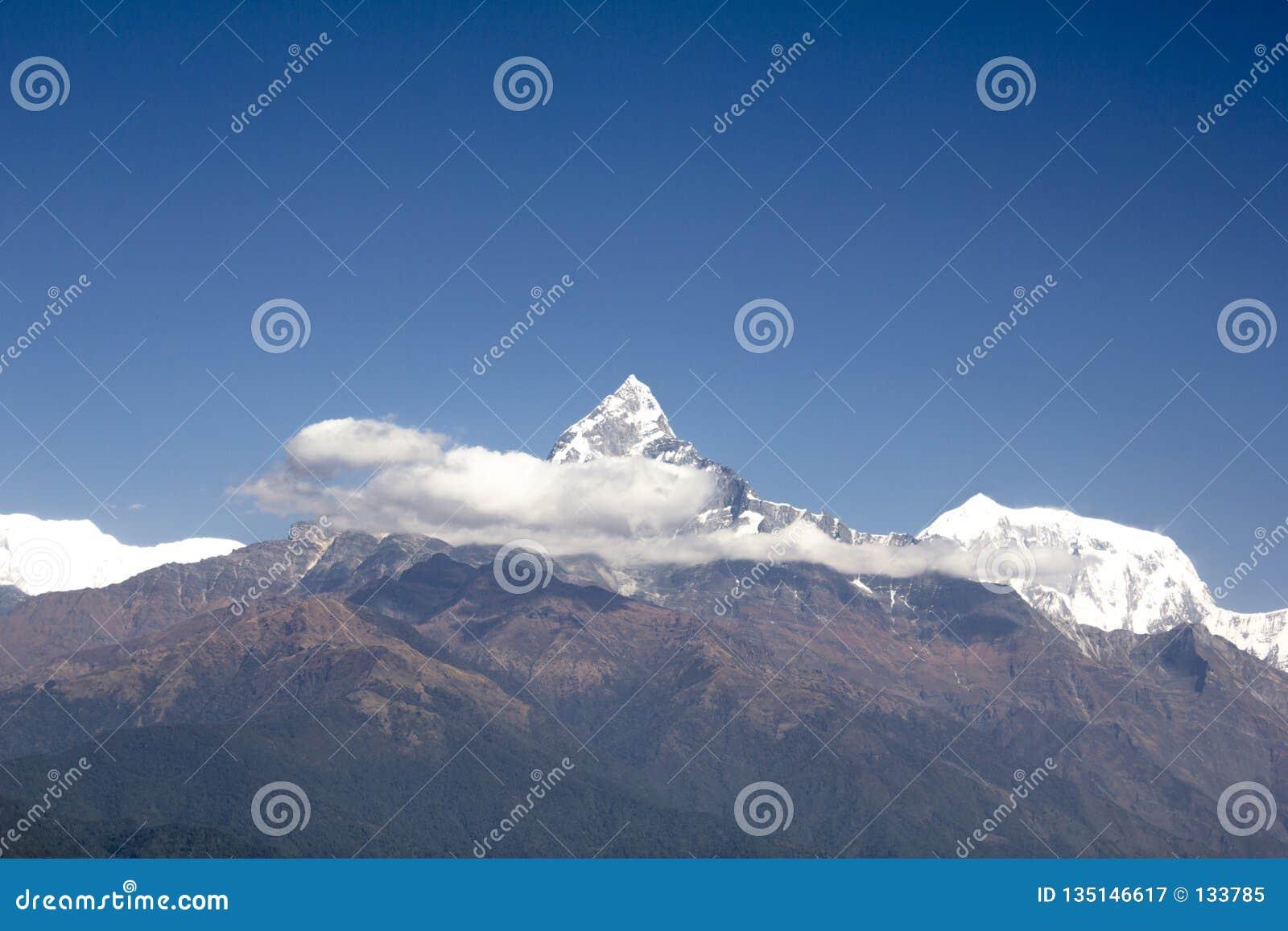 Зеленый наклон держателя Annapurna со снежным пиком Machapuchare и белых облаков против чистого голубого неба Гималаи Непала