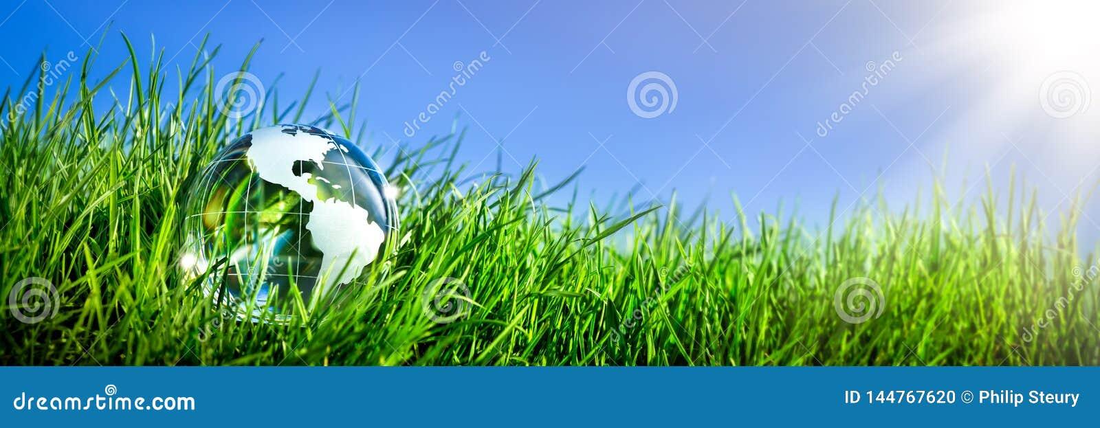 Земля Кристл в траве