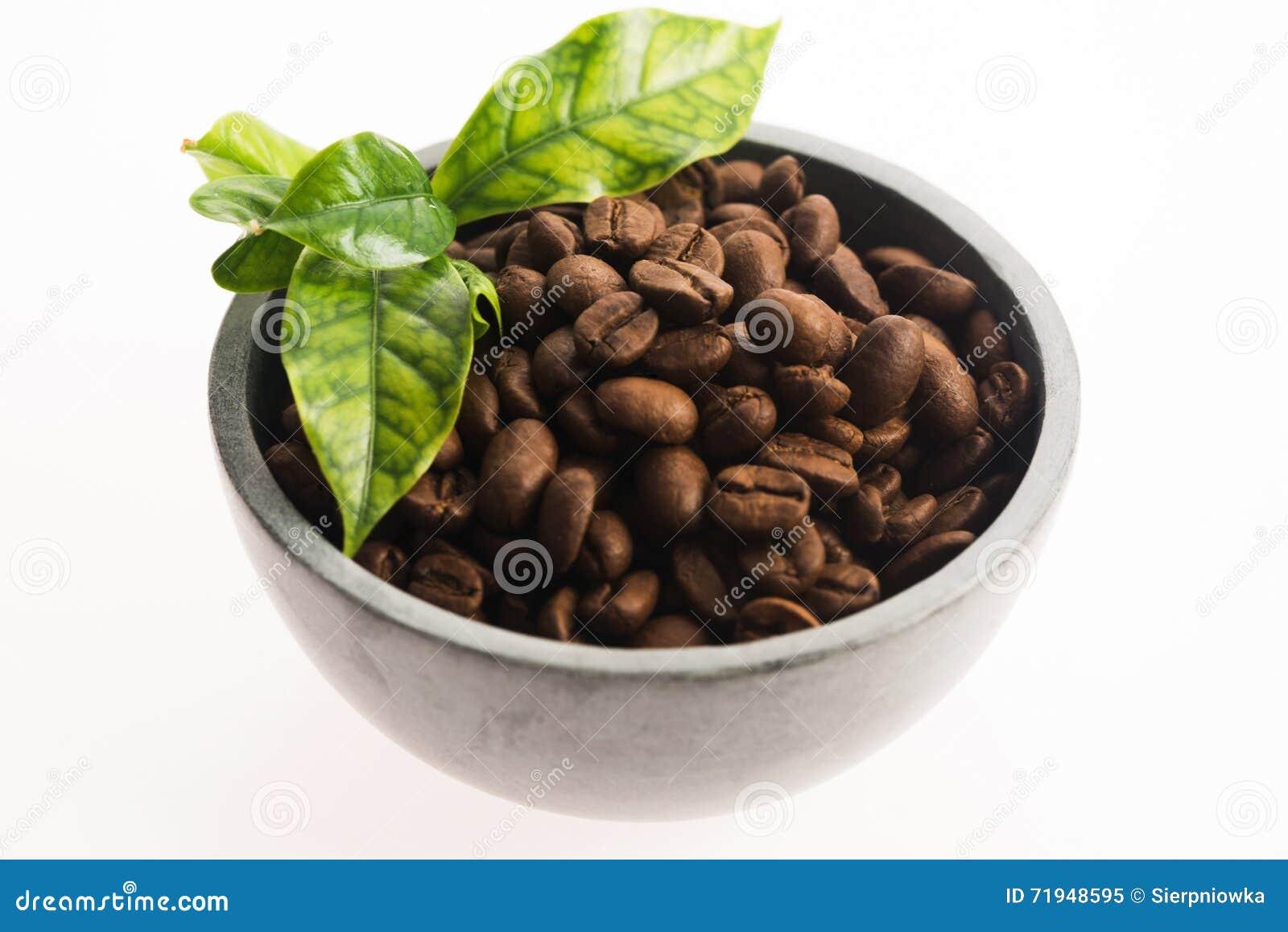зерна кофе предпосылки близкие изолировали фото вверх по белизне
