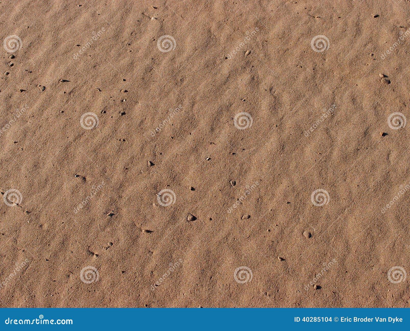 Зерна песка и раковин пляжа ЛА