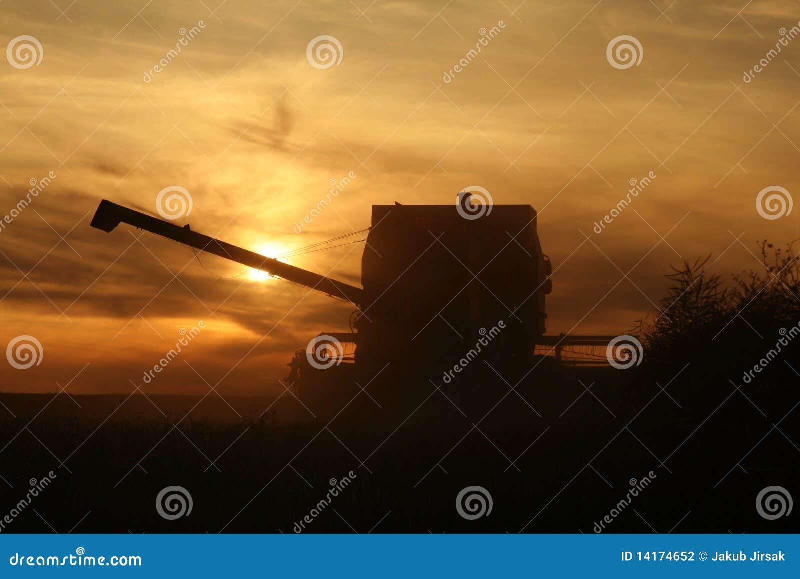 зернокомбайн земледелия