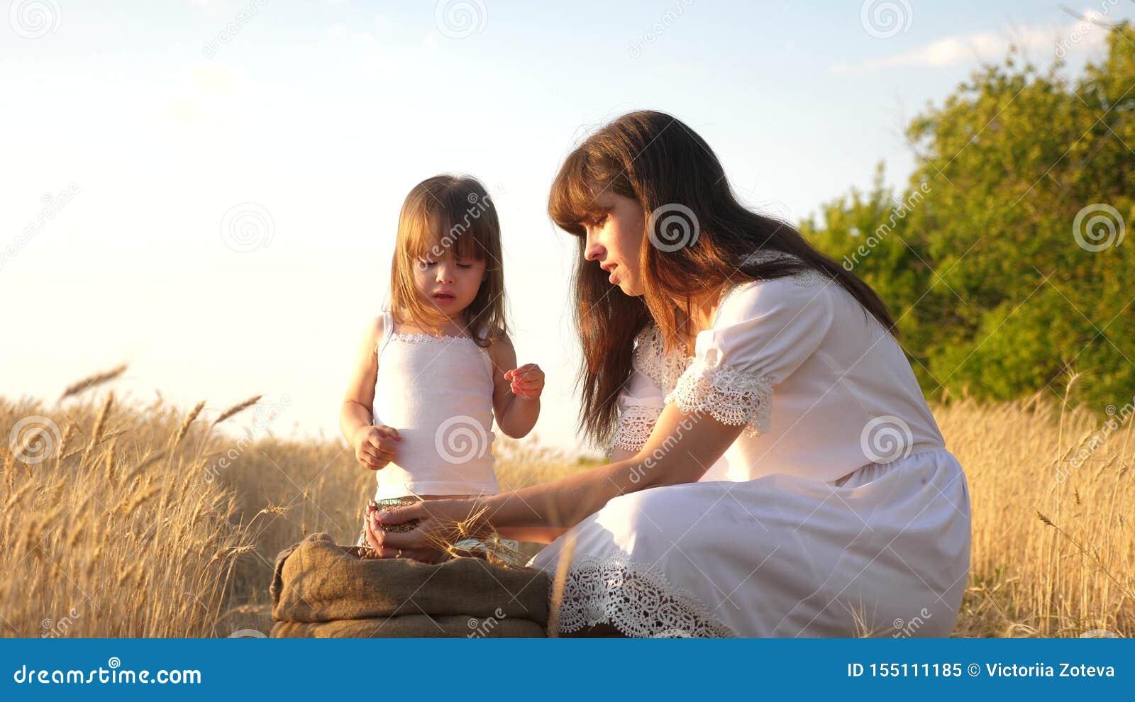 Зерно пшеницы в руках ребенка мать и меньший ребенок играют с зерном в сумке на пшеничном поле ребенок