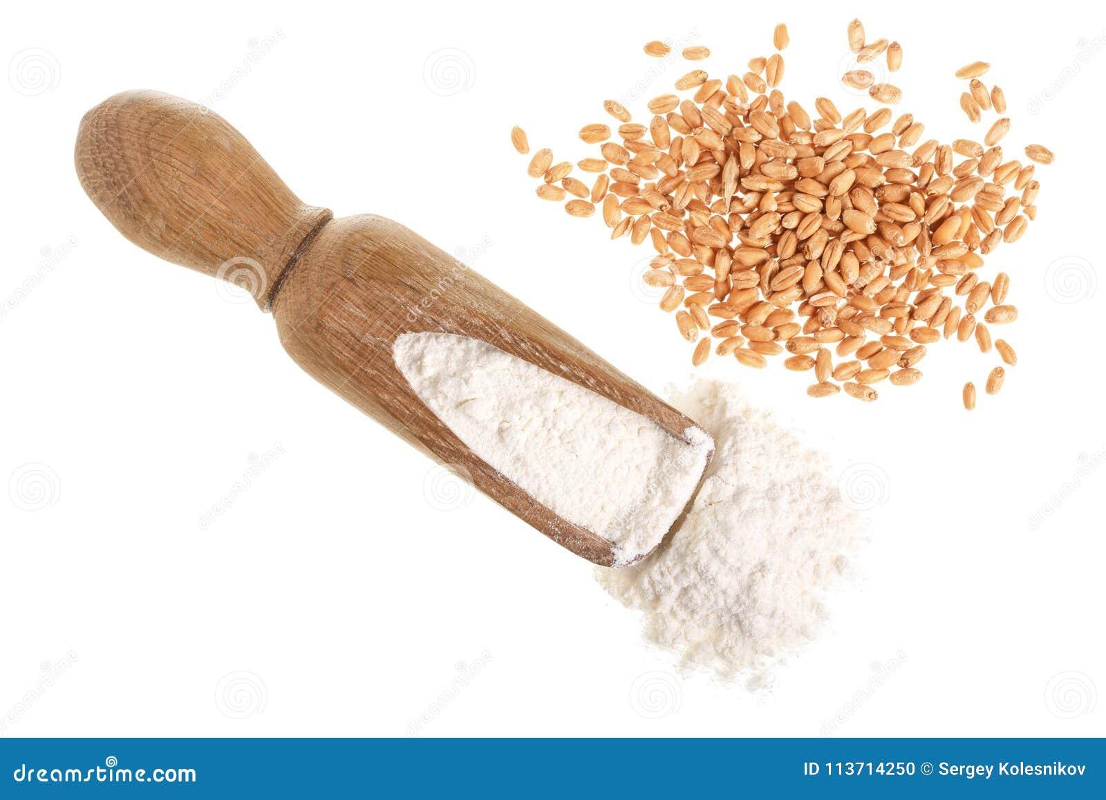 Зерно пшеницы и куча муки в деревянном ветроуловителе изолированном на белой предпосылке Взгляд сверху Плоское положение