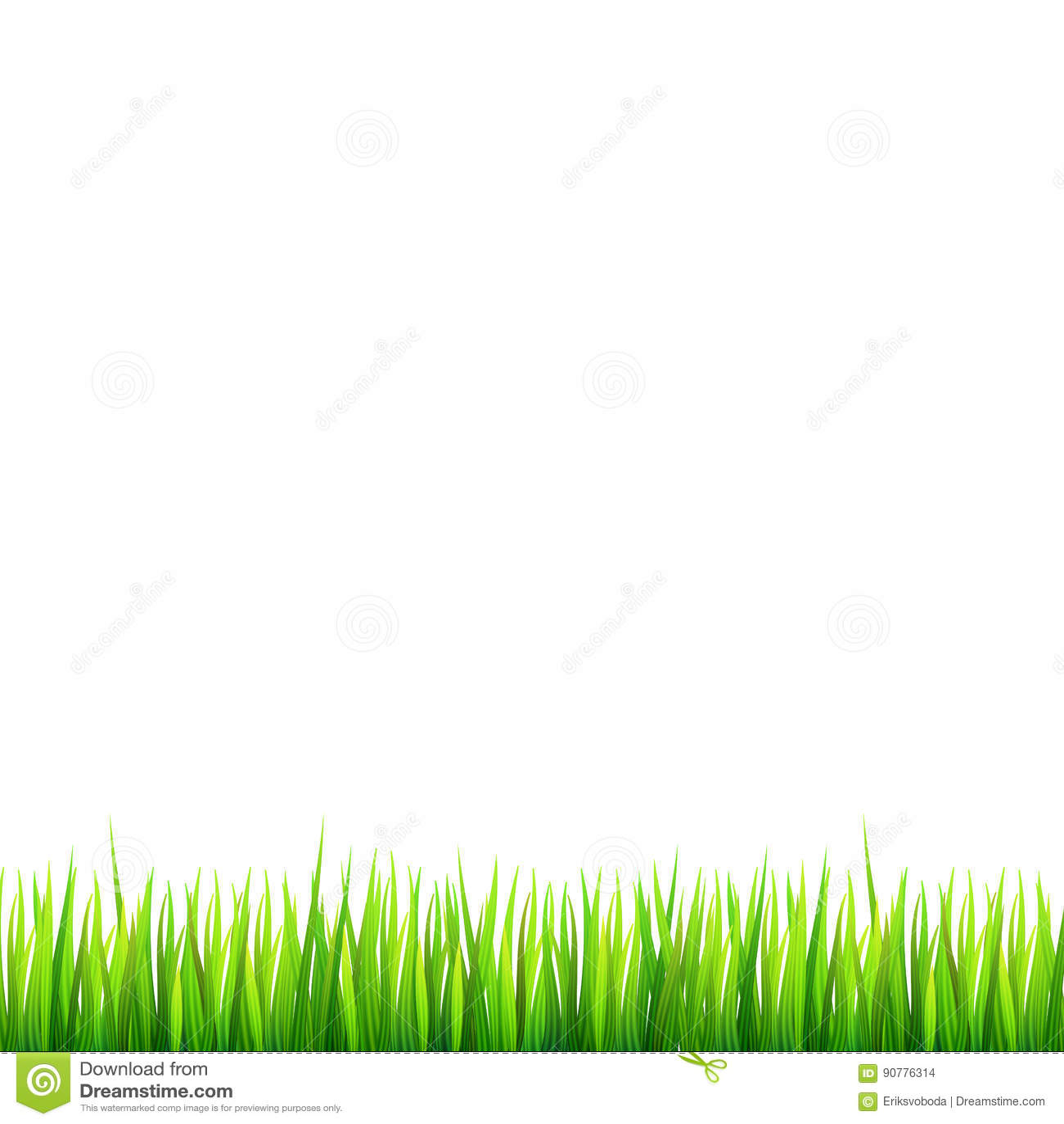 Зеленая, естественная граница травы с белыми маргаритками, цветок стоцвета и малый красный ladybug на белой предпосылке Шаблон дл