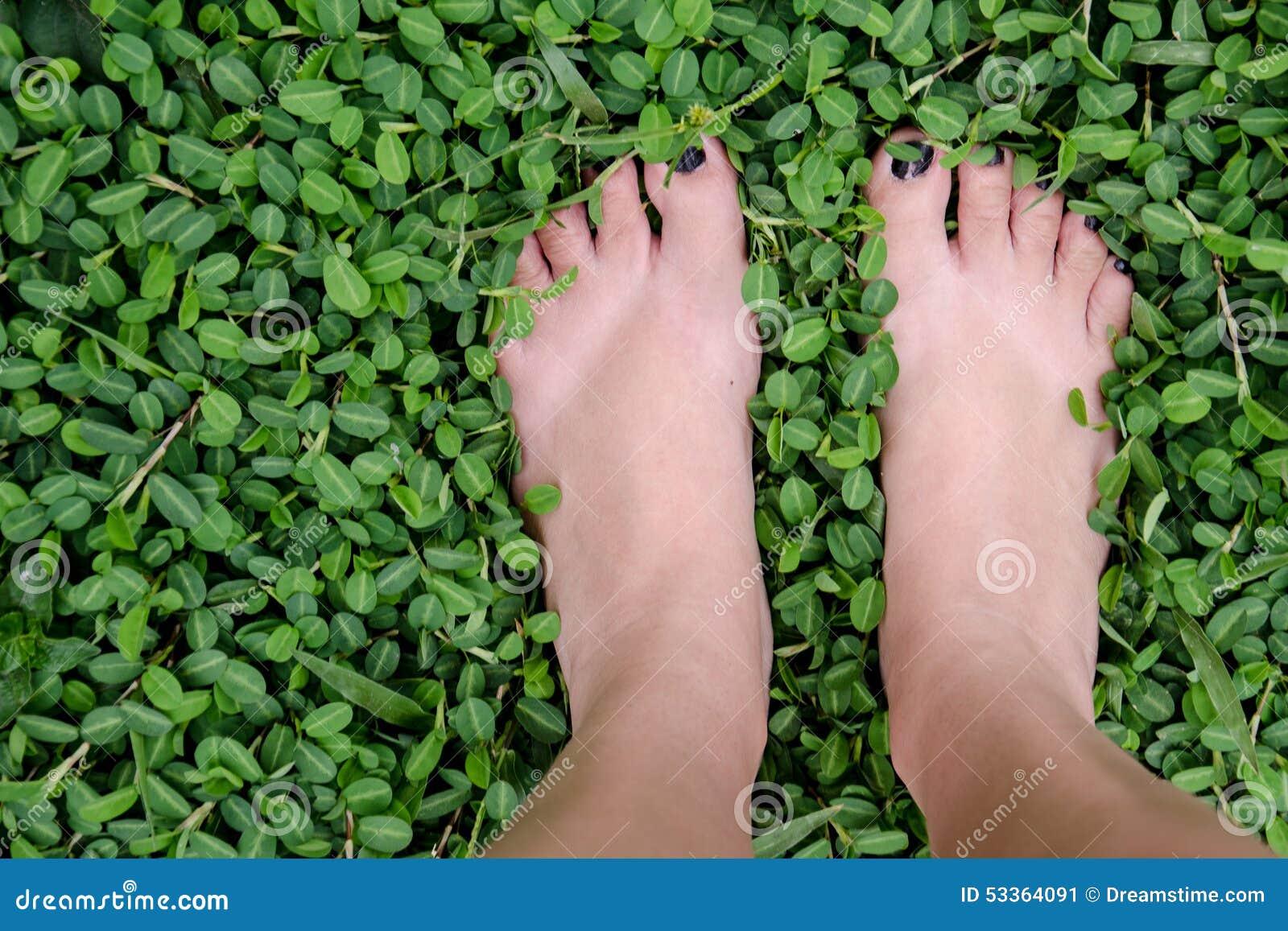 зеленая прогулка