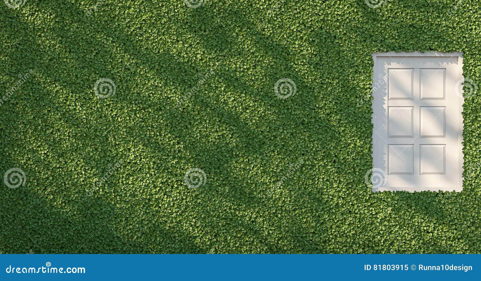 Зеленая стена & белое изображение перевода окна 3D