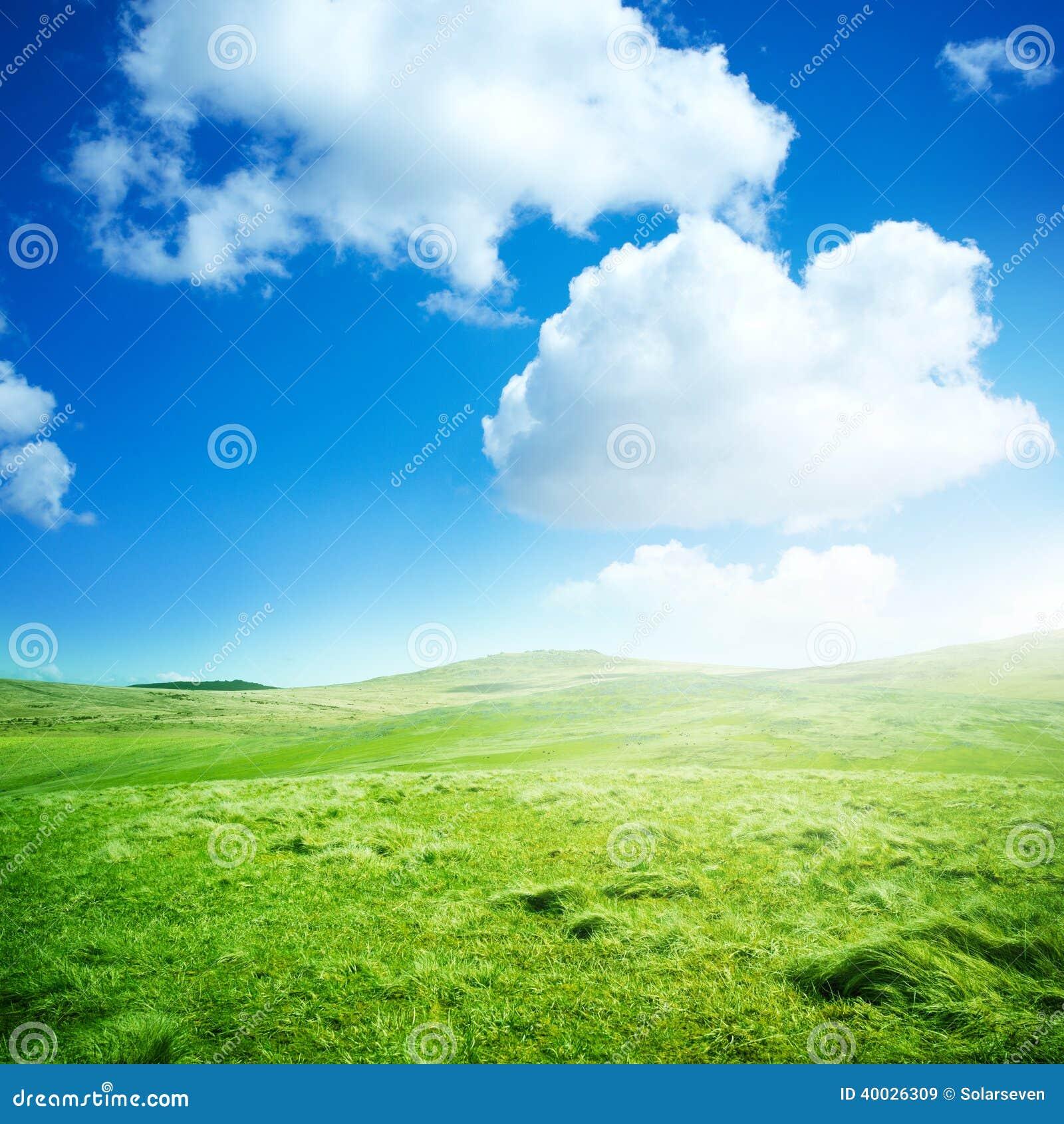 Зеленые поля завальцовки