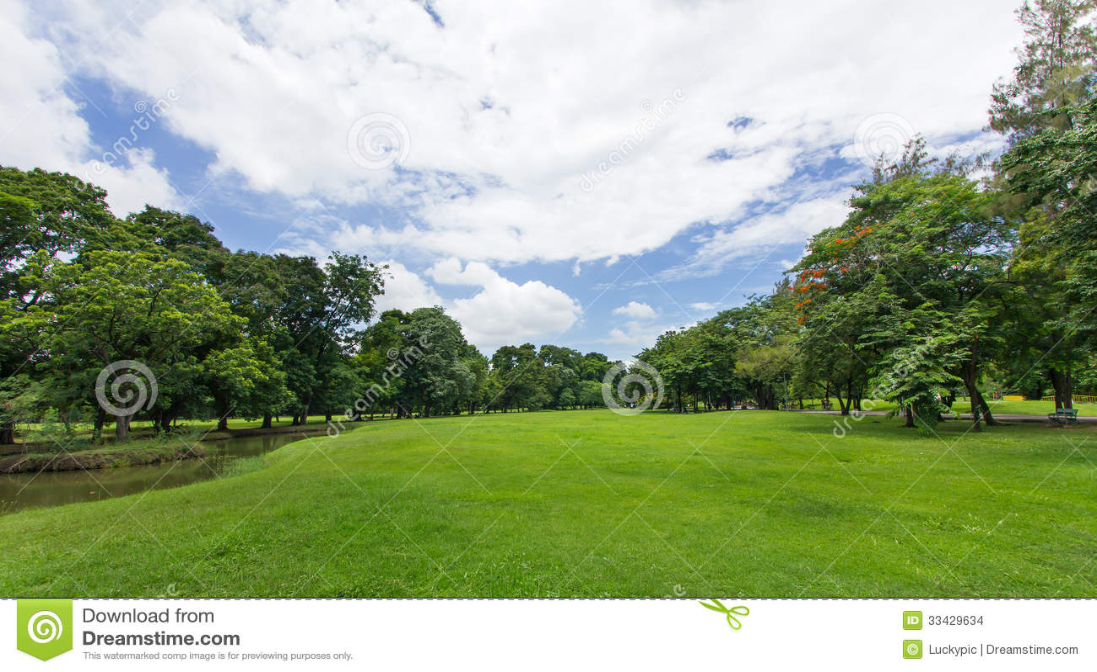 Зеленые лужайка и деревья с голубым небом на общественном парке