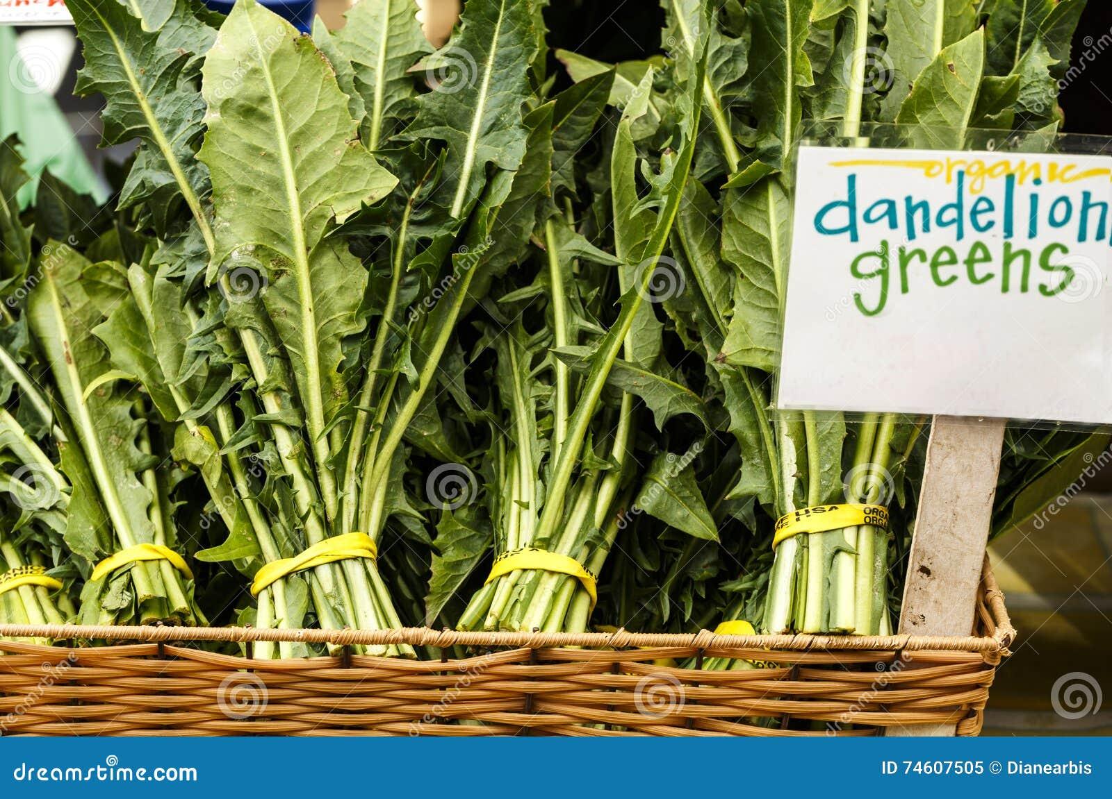 Зеленые цвета одуванчика