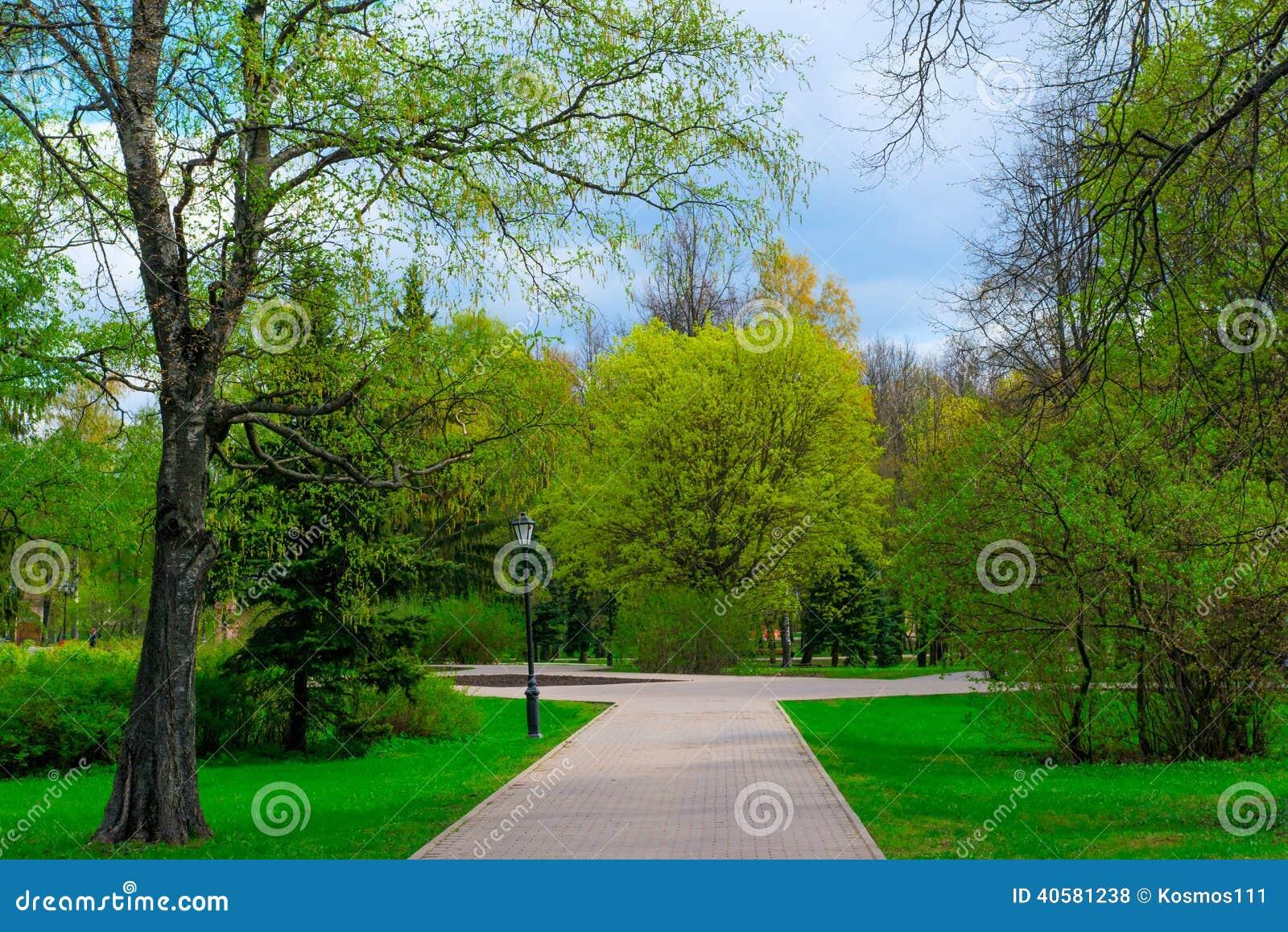 Зеленый парк весны в Новгороде