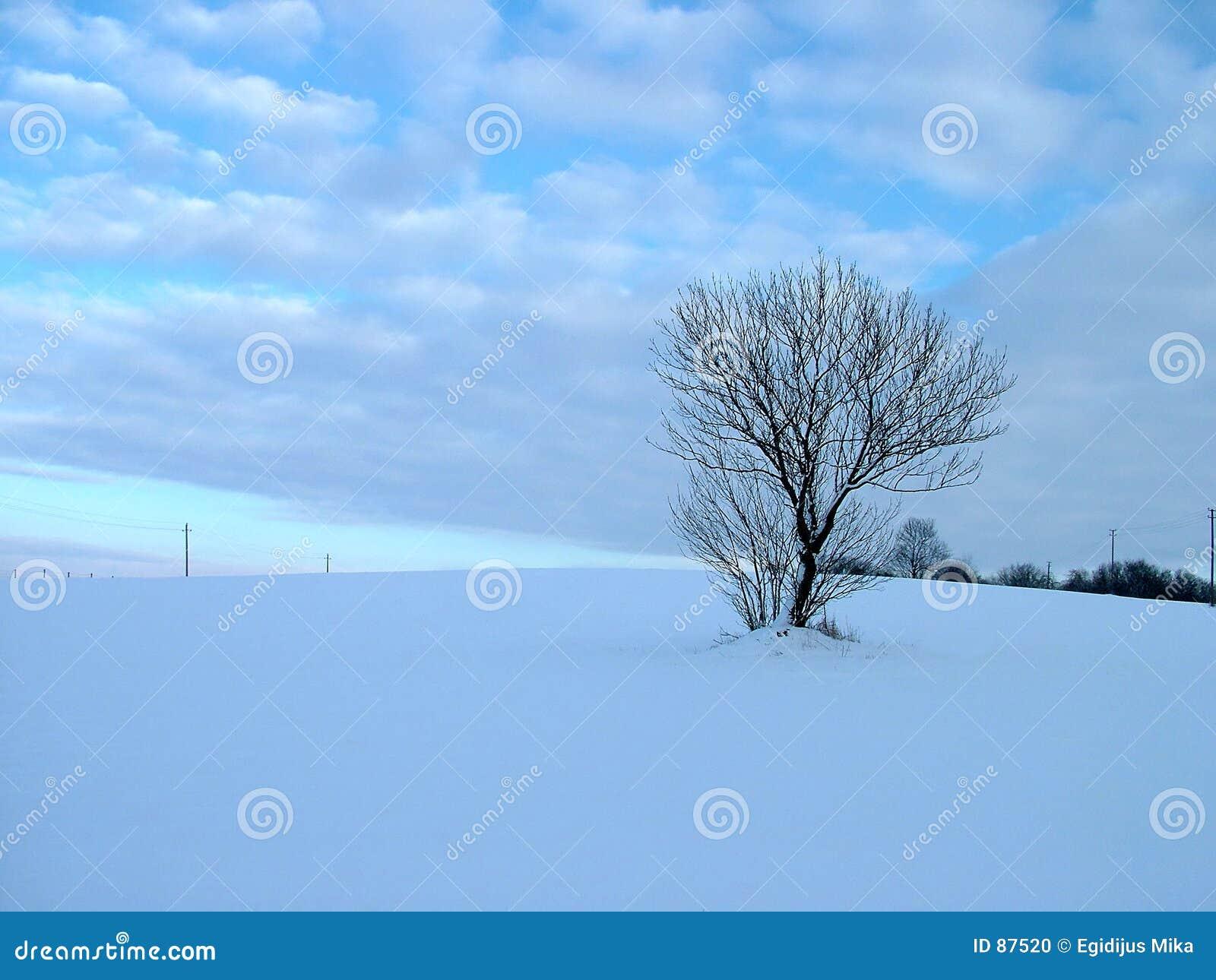 зима вала поля солитарная