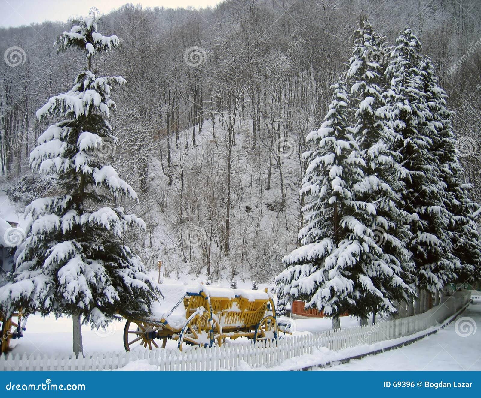 зима валов сосенки