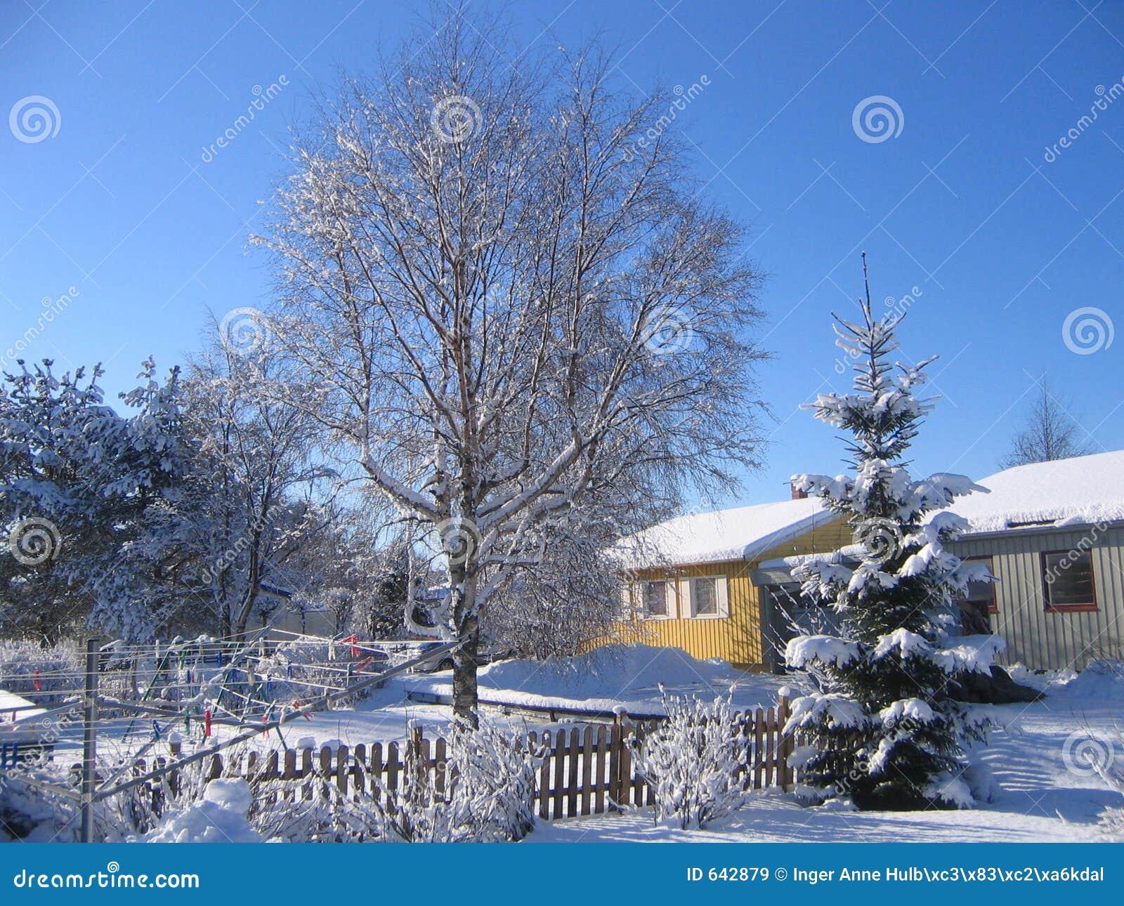 Download зима района стоковое изображение. изображение насчитывающей clothesline - 642879