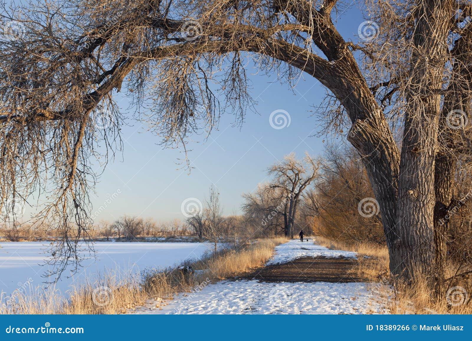 зима тропки