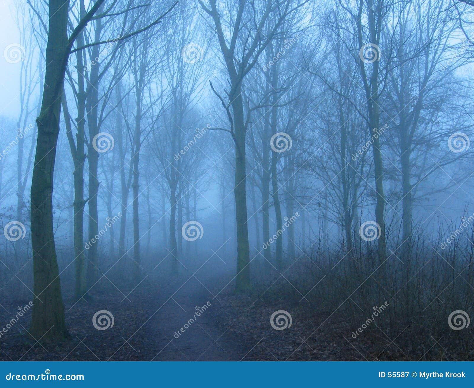 зима тумана