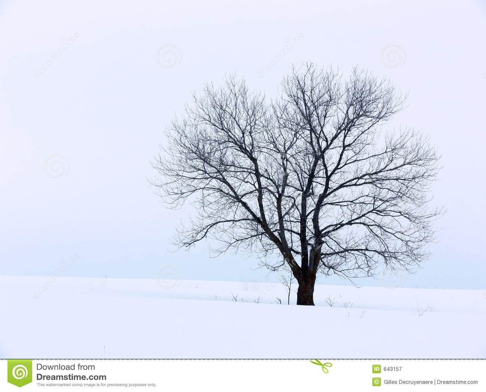 Download зима solitute стоковое изображение. изображение насчитывающей естественно - 643157