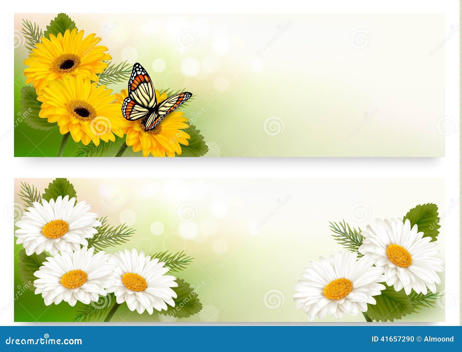 Знамена лета с красочными цветками и бабочкой
