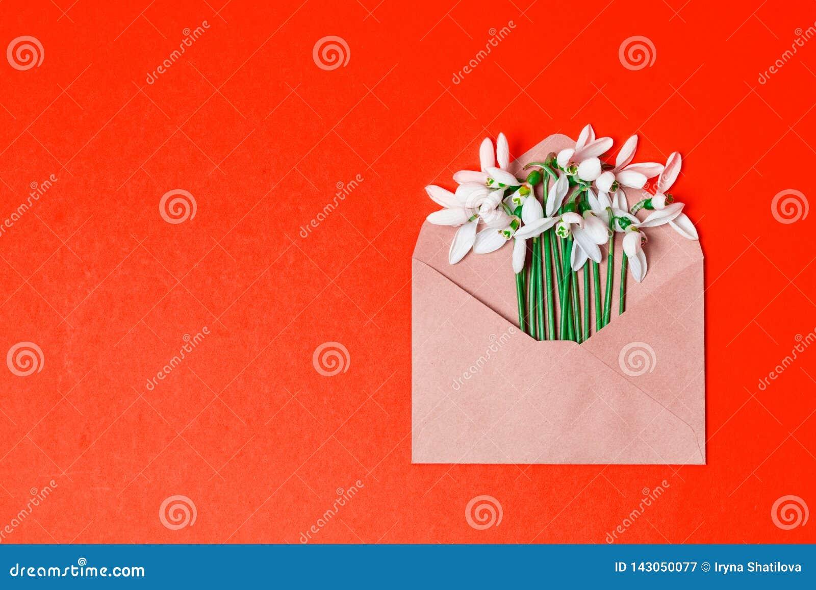 Знамя концепции весны конверт с цветками весны на предпосылке с местом для текста